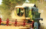 Investir sur le blé